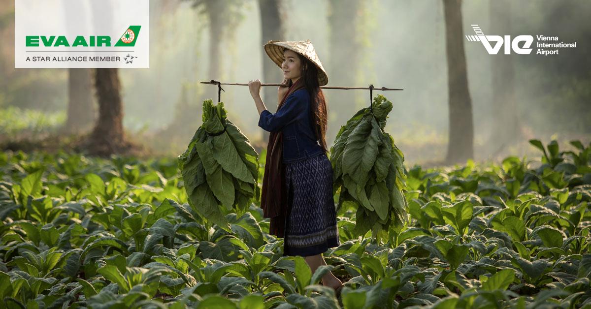 Laos - miesto, na ktorom zastal čas