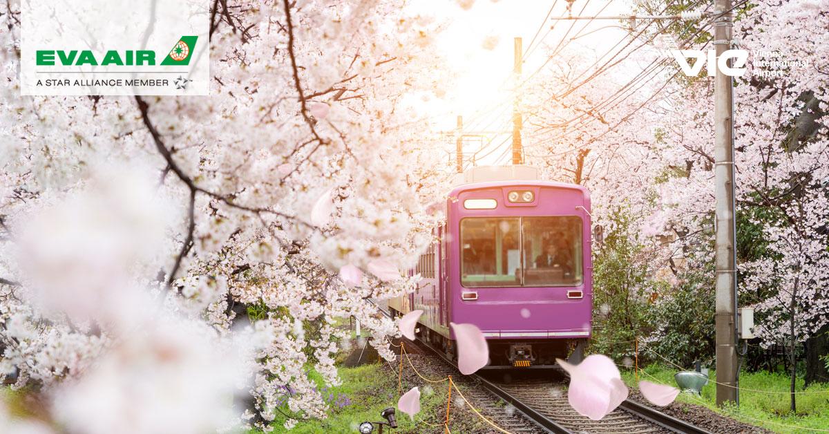 Japonsko - miesto, kde zažiješ všetko