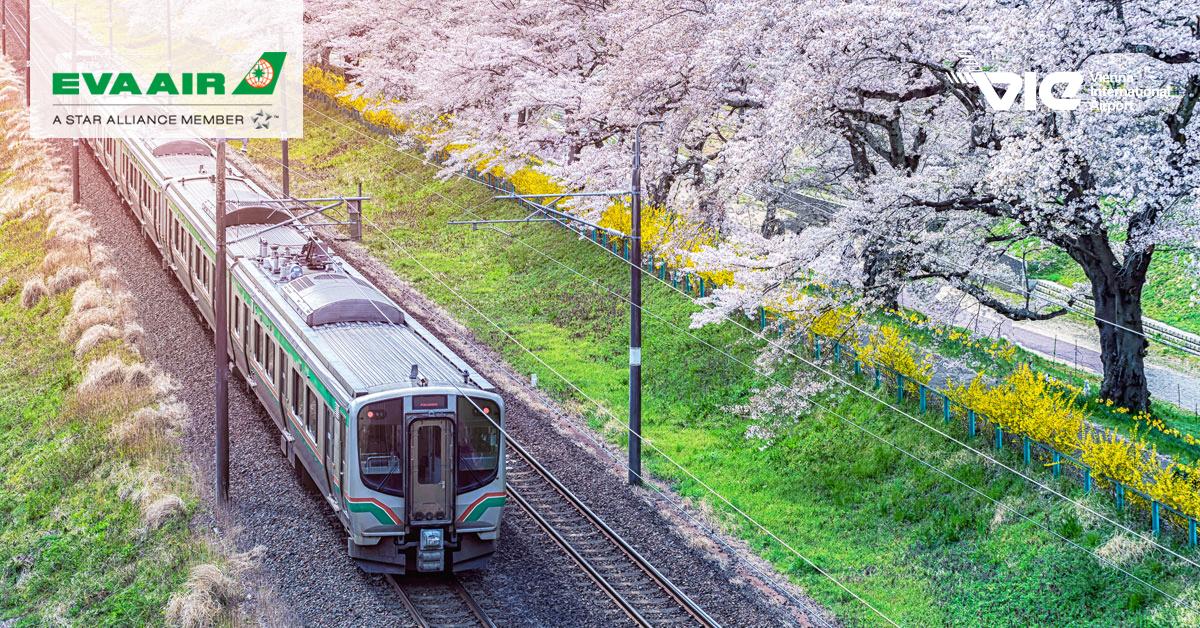 Sendai - mesto prírodných krás